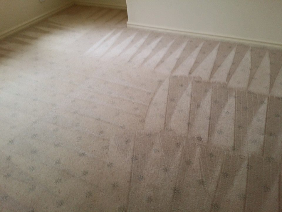 carpet cleaning in residential property perth