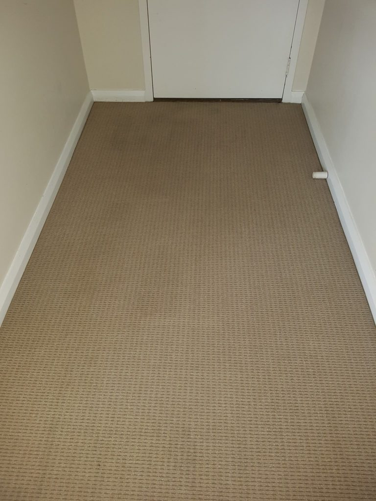 Residential property carpet cleaning in Perth