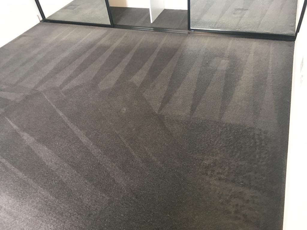 Remove Carpet Odours