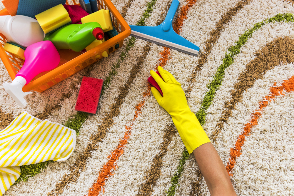 Eliminate Strong Odours in Your Carpet
